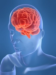Zhaoyuan Brain Injury Lawyer - Zhaoyuan Brain Injury Attorney